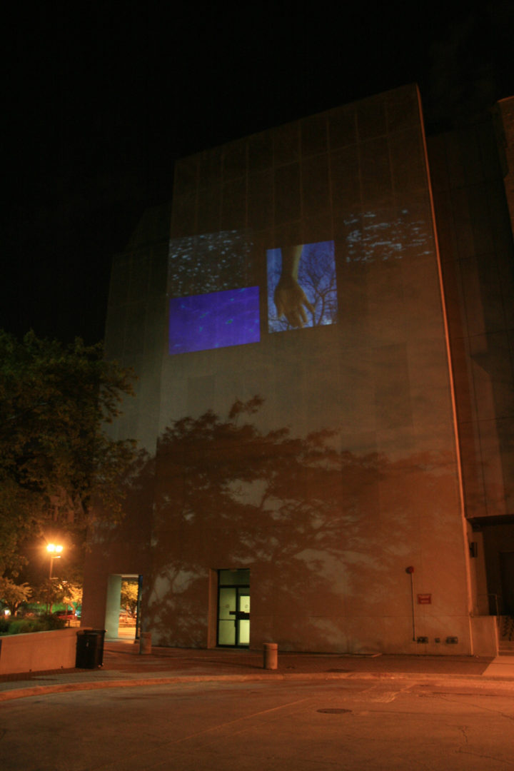 Opening Projection, Surgery - Brain Research Pavilion, University of Chicago, IL, USA, May 11, 2012.