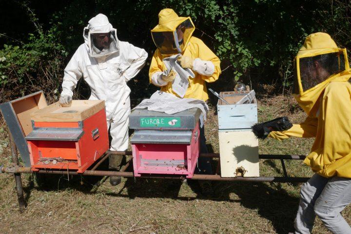 Le api del lago Bullicante ExSnia (per una scena di Porta Maggiore), 2018. Production still.
