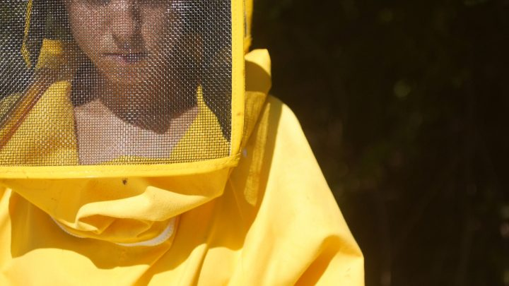 Le api del lago Bullicante ExSnia (per una scena di Porta Maggiore), 2018. Video frame.