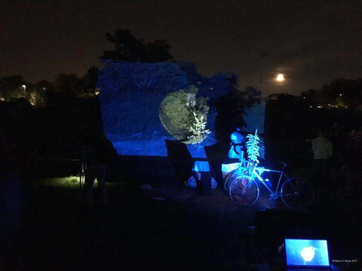 Meduse (per una scena di Porta Maggiore): Proiezione notturna estranea n. 2; Nella prateria del Lago Bullicante/Ex Snia, Festa—Ritorno al lago che combatte, Lago Ex Snia, 2019, Rome, Italy. Public projection.