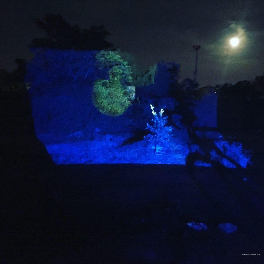 Meduse (per una scena di Porta Maggiore): Proiezione notturna estranea n. 2; Nella prateria del Lago Bullicante Ex Snia