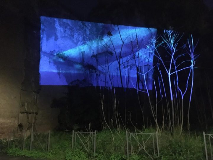 Delfini (per una scena di Porta Maggiore): Proiezione notturna estranea n. 3; Acquedotto Felice, via del Mandrione 390, in collaboration with Stalker/NoWorking, L'inatteso a Roma Est, 2019, Italy. Public Projection.