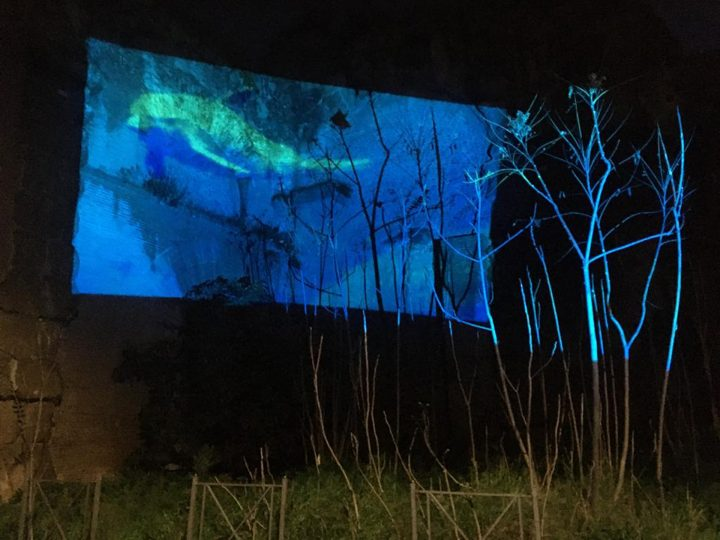 Delfini (per una scena di Porta Maggiore): Proiezione notturna estranea n. 3; Acquedotto Felice, via del Mandrione 390, in collaboration with Stalker/NoWorking, L'inatteso a Roma Est, 2019, Italy. Public Projection. Public Projection.