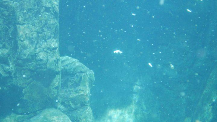 Sirenii (per una scena di Porta Maggiore), 2019-20. Video frame. © mgf