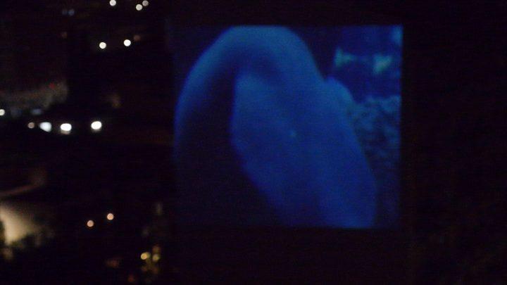 Sirenii (per una scena di Porta Maggiore): Proiezione notturna estranea n. 5; Facciata del palazzo di via Braccio da Montone 62, Pigneto, with musicians Legari and Ancillotto, public projection, Marco G. Ferrari. In Marco Asilo—La Casa Ospitale; Home Performances (for the broken hearts), Casa di Marco, Rome, Italy, February 14, 2020, group exhibit. Video frame by Barbara Greco.
