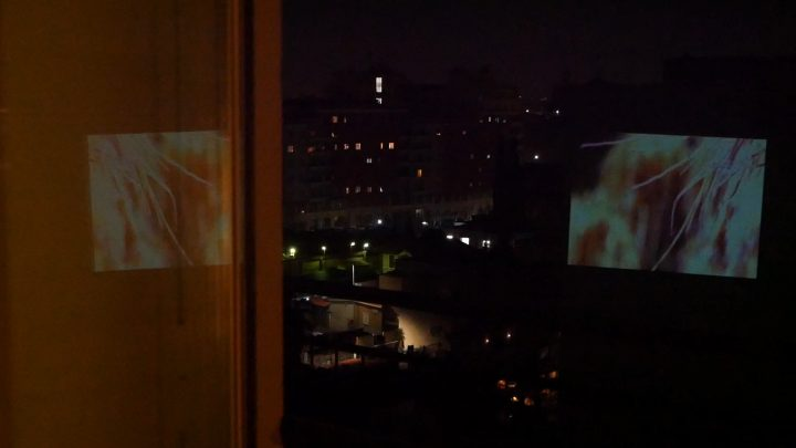 marcogferrari-anemone-scena-porta-maggiore-2019-hdvideo-public-projection-video-frame-personal-work-rome-marcoasilo-home-projections-img-mgf-20200403-vweb-022