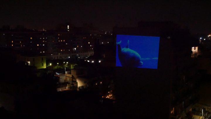 marcogferrari-delfini-scena-porta-maggiore-2019-hdvideo-public-projection-video-frame-personal-work-rome-marcoasilo-home-projections-img-mgf-20200322-vweb-006
