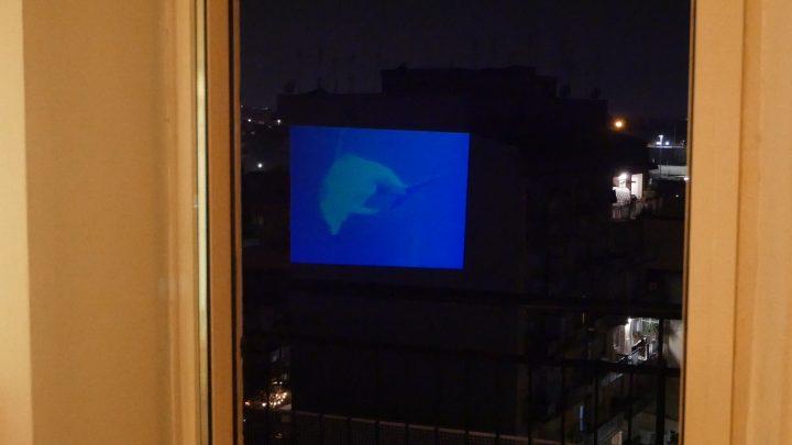 marcogferrari-delfini-scena-porta-maggiore-2019-hdvideo-public-projection-video-frame-personal-work-rome-marcoasilo-home-projections-img-mgf-20200322-vweb-018