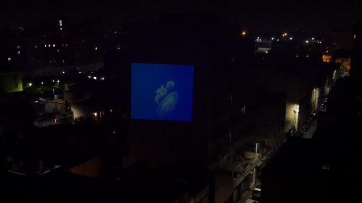 marcogferrari-medusa-per-una-scena-portamaggiore-2019-hdvideo-public-projection-video-frame-personal-work-rome-marcoasilo-home-projections-img-mgf-20200320-vweb-005