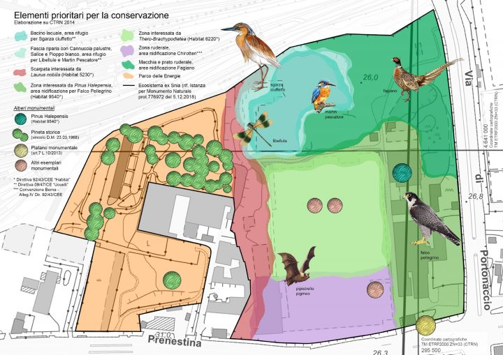 forum-parco-energie-roma-lago-bullicante-ex-snia_piantina-natura