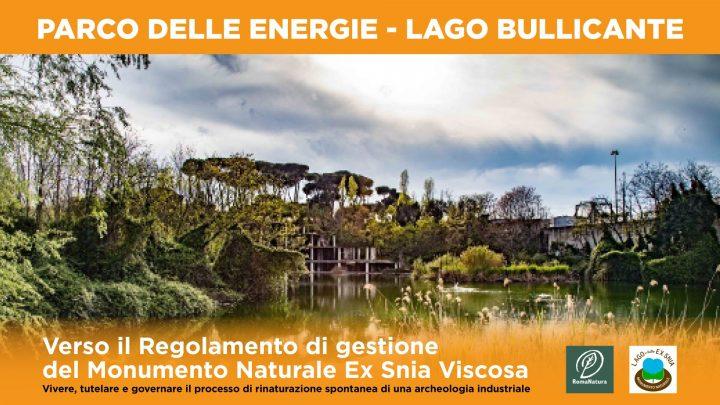 verso-il-regolamento-di-gestione-del-monumento-naturale-ex-snia-viscosa_parco-delle-energie-lago-bullicante-rome-italy_10-14-2021_online-conference_curated-by-forum-parco-energie_poster